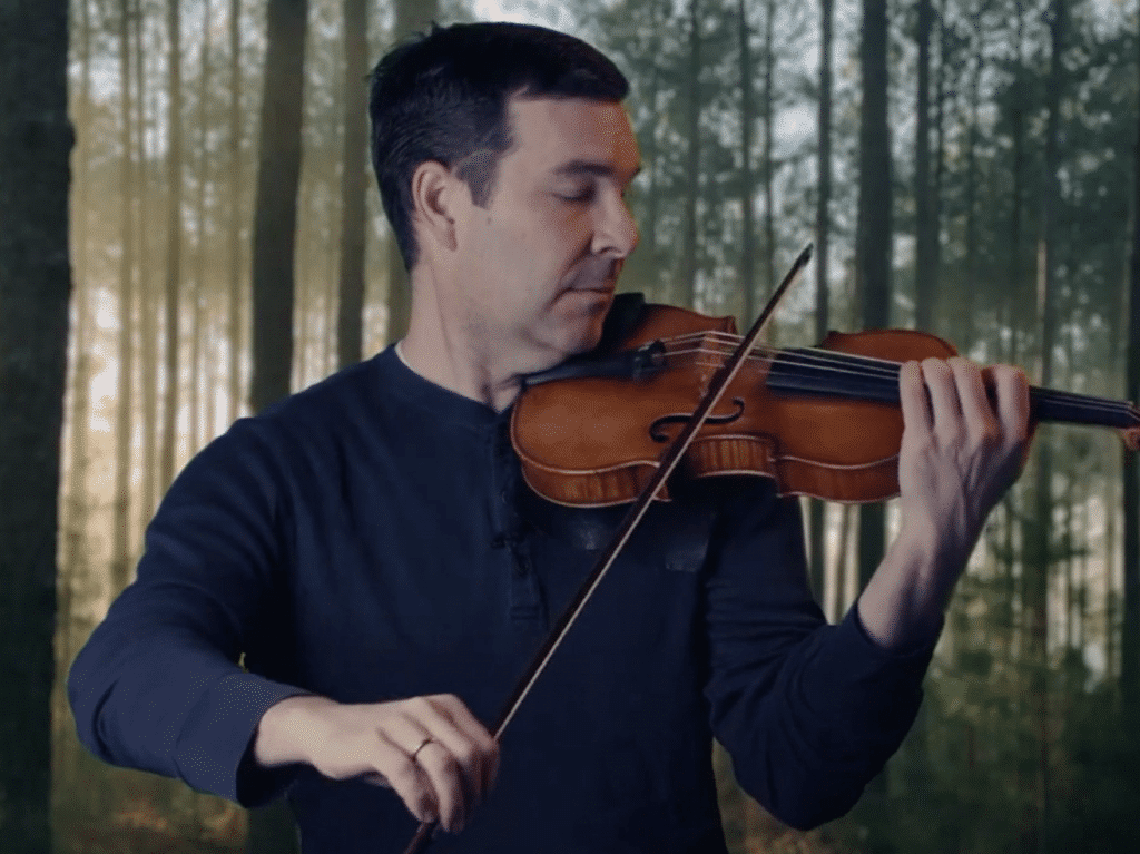 Forest calm violin